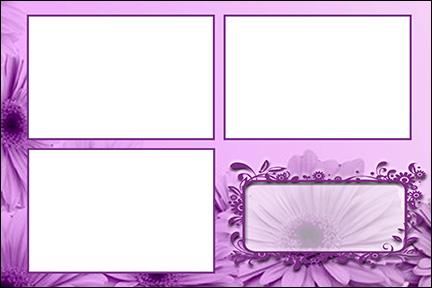 4047 - Purple Flowers