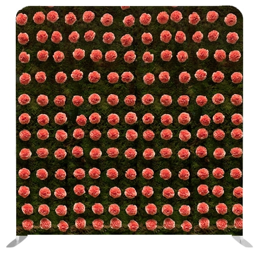 118a - Carnation Wall Stretched Fabric