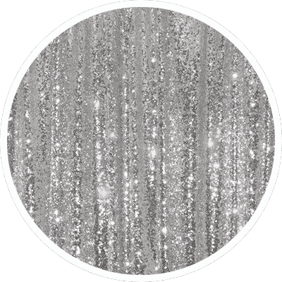 206 - Silver Sequin - Enclosed